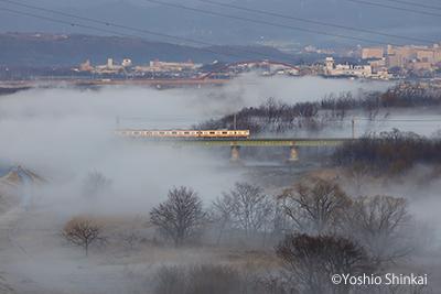 多摩川3.jpg