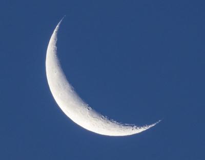 月のアップ.jpg