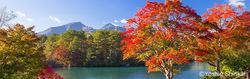 紅葉10月 福島県.jpg