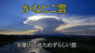 かなとこ雲.jpg