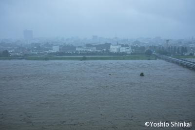 台風による増水.jpg