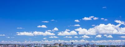 夏空 2.jpg