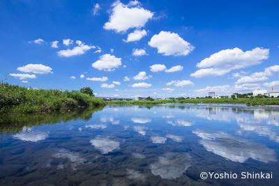 夏空の多摩川.jpg