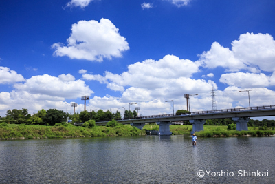 夏空の多摩川2.jpg
