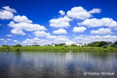 夏空の多摩川3.jpg