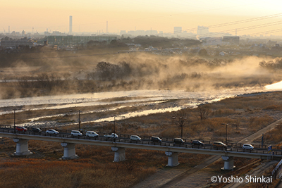 多摩川2.jpg