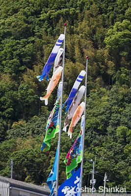 幟旗2.jpg