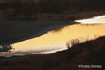 朝の川.jpg