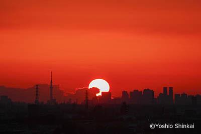 朝日とビル群.jpg