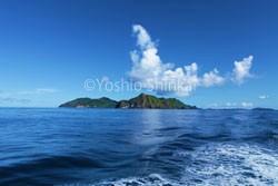 母島7.jpg