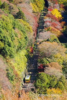 高尾山03.jpg